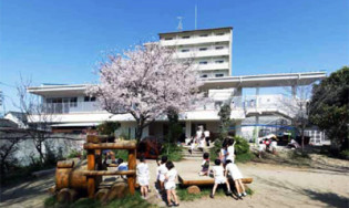 もみの木保育園建て替え工事(エコスフレーム構法)/みどり建築企画一級建築士事務所